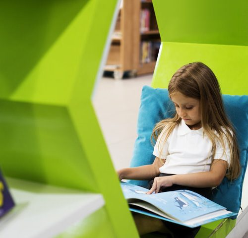 Young Girl Reading Children Story Book in Library